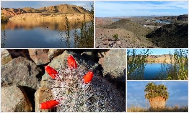 Yuma, AZ Mittry Lake2