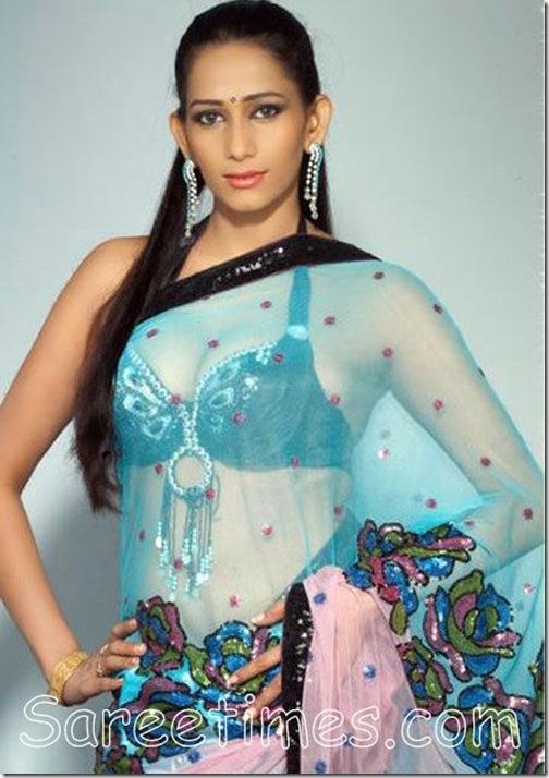 Sanjana_Singh_Shimmer_Saree