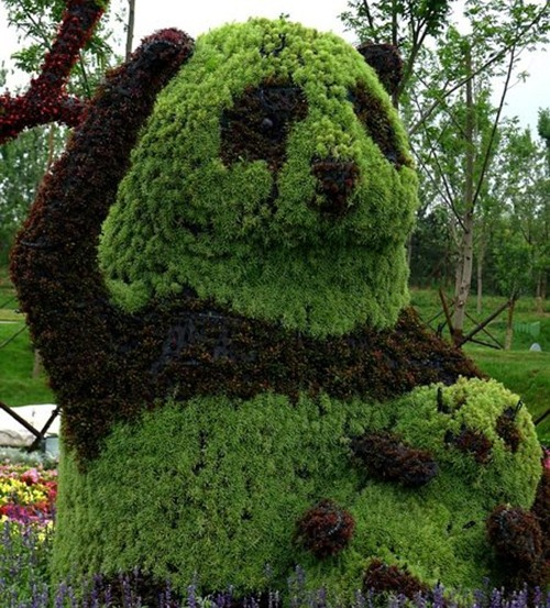 Panda Topiary in China
