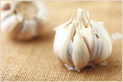 Mild Hypertension Garlic Drugs or Cocoa