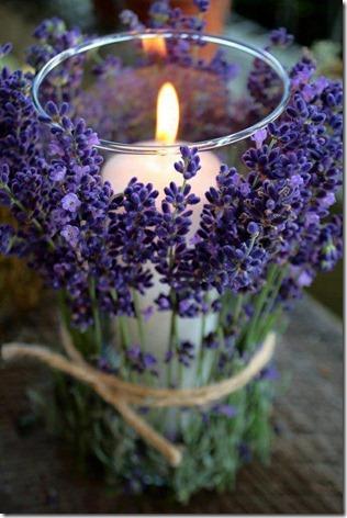 flores-facebook-tumblr-rosas-las flores-fotos de flores-706