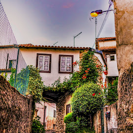 The alley by Pedro Silva - City,  Street & Park  Neighborhoods ( covilhã, hdr, pedrosilvaimages, tortosendo, portugal, alley )