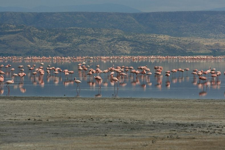 lake-natron-10