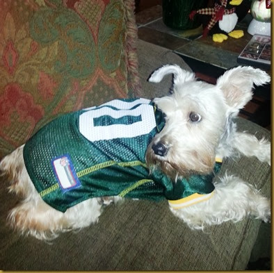 gracie in packer costume