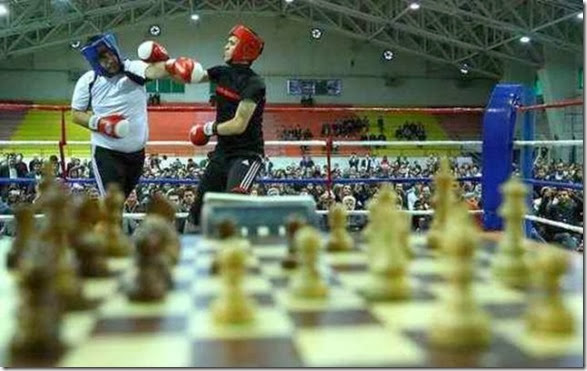 chessboxing-chess-box-3