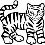 tiger_op_770x716.jpg