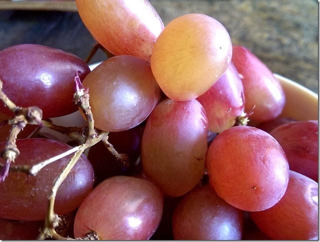 grapes-public-domain-pictures-1 (2242)