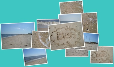 View blog beach