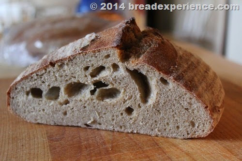 bread-sprouted-flour_801