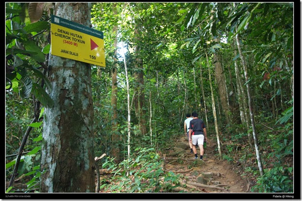 Hiking17