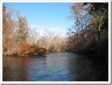 2012-12-4 Ocala (5)