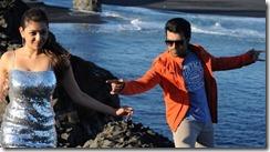 naayak movie latest hot photos