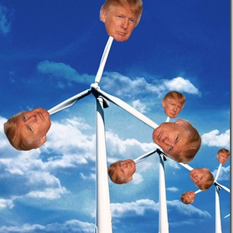 Donald Trump Now In Favour Of Wind Turbines At Scottish Course After Seeing Alternative Design