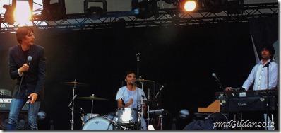 Rock en Seine 2011 (20)