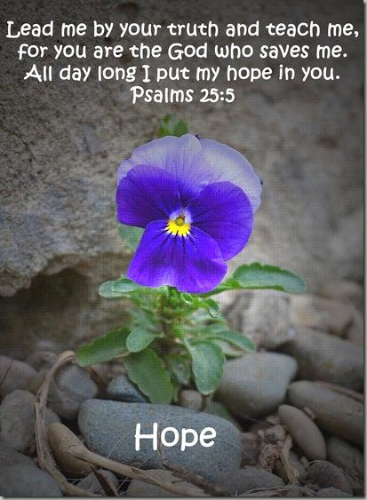 hope 2