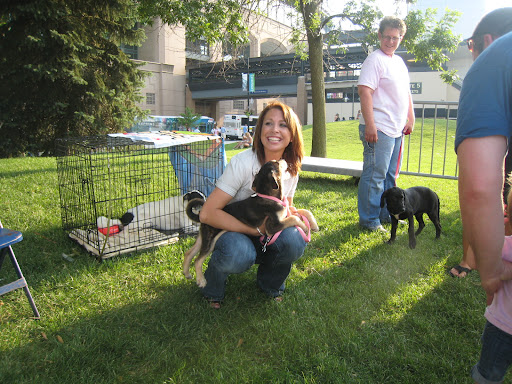 Jamie (with an adorable friend) works the adoption booth at a Sox For Strays event at U.S. Cellular Field, home of the White Sox.