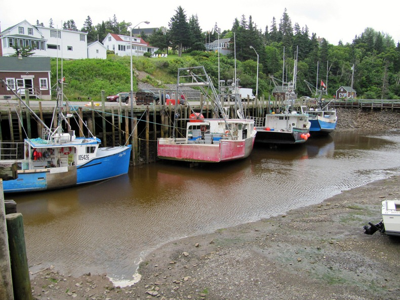 bay-of-fundy-10