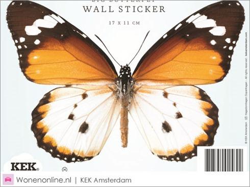 kek-amsterdam-vlinder-butterfly-muurstickers-3