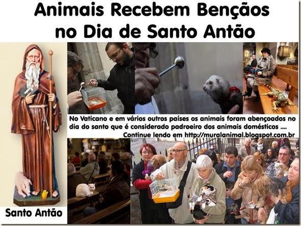 animais-santo_antao