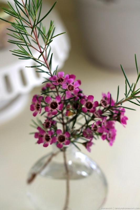 Spring Pink Hutch - homework (6)