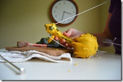 houzz pulling string through gourd amy renea a nest for all seasons