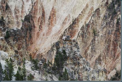 Yellowstone 007