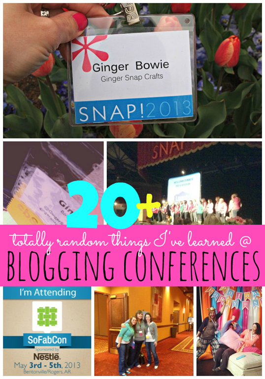 20 Totally Random Things I've Learned at Blogging Conferences_thumb[2]