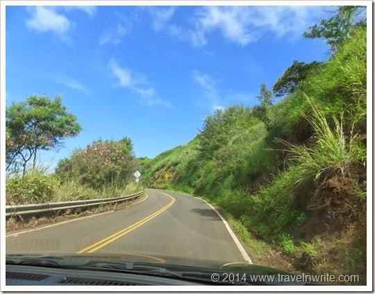 Maui2014SF 008
