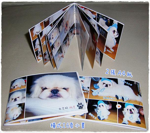 20091026dog-minibook.jpg