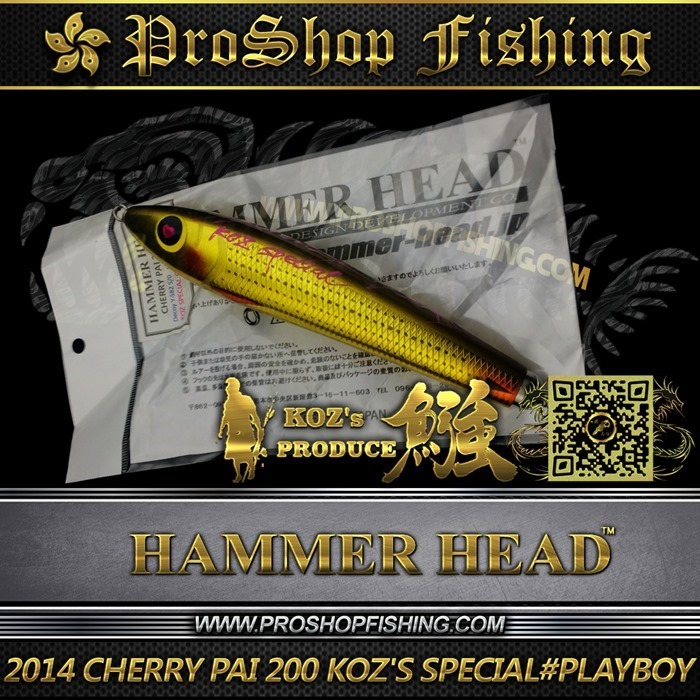 2014 CHERRY PAI 200 KOZ'S SPECIAL #PB (6)_thumb