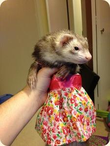 tank top dress Molly