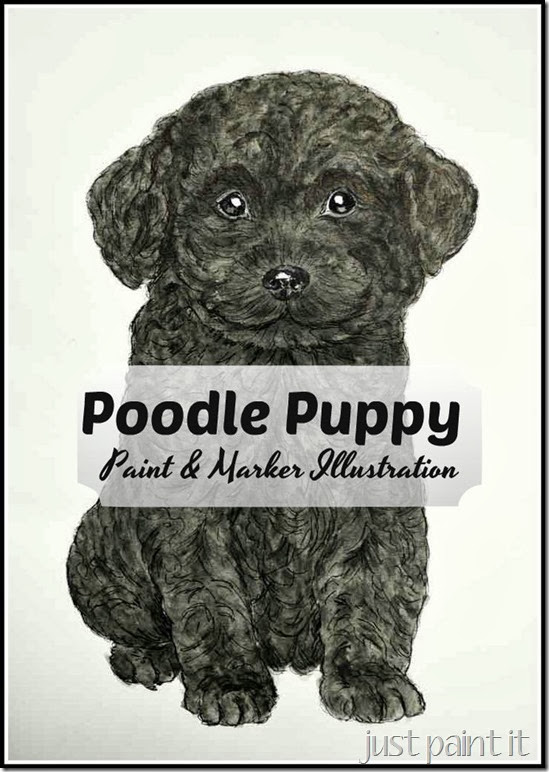 Poodle-Puppy-Illustration