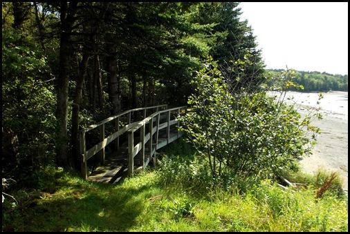 Campobello  3 SW trail loop 024