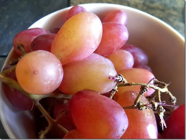 grapes-public-domain-pictures-1 (2233)