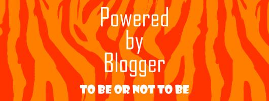 blog thiết kế - bàn luận về việc viết blog