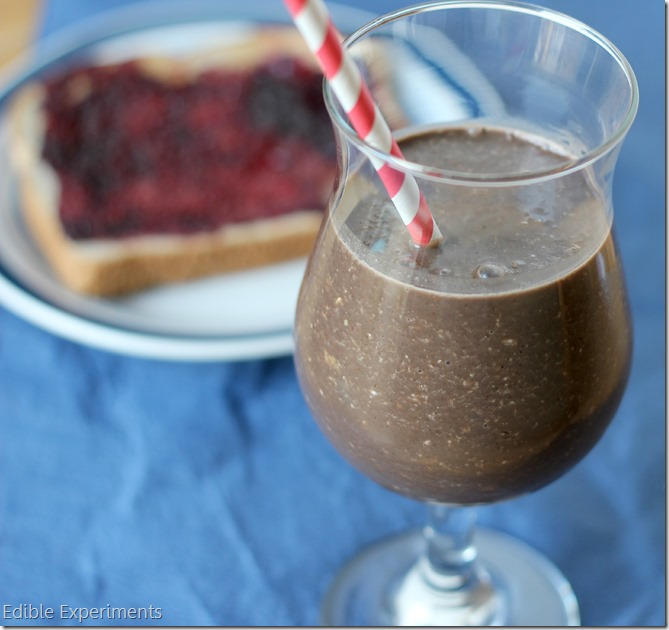 Healthy and Easy Peanut Butter Chocolate Breakfast Shake