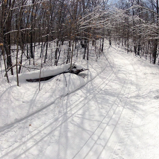 Fresh tracks on Twin Lakes