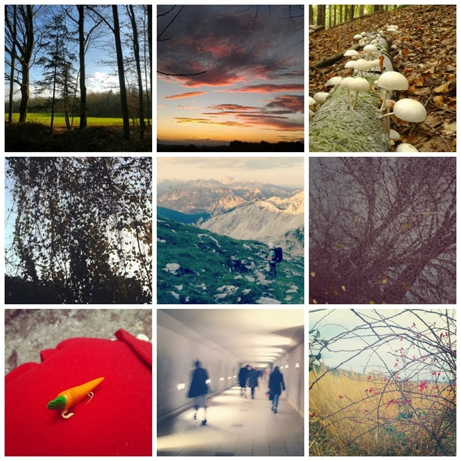 365 walks collage (7)