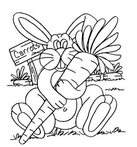 coelho-com-cenoura
