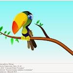 10_Pelican.jpg