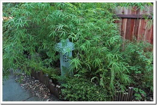 110624_woodland_garden