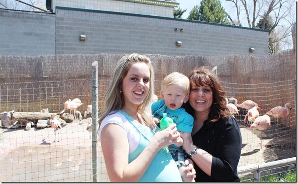 123cr tautphaus park zoo