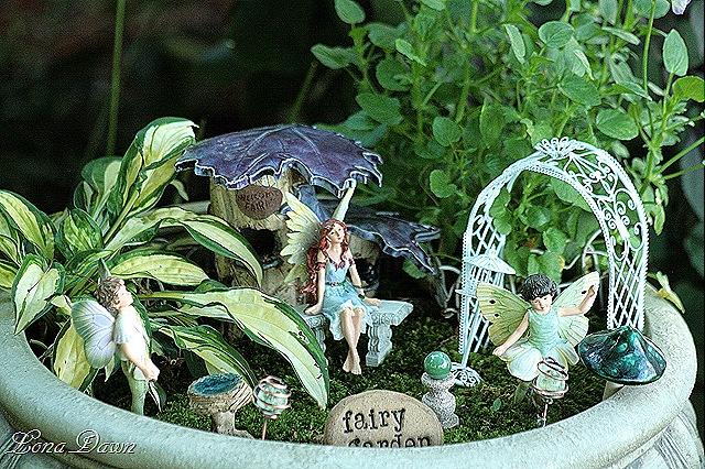 [Fairy_Garden_June89.jpg]