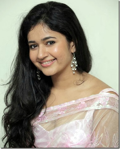 Actress Poonam Bajwa Hot Photos in Transparent Pink Saree