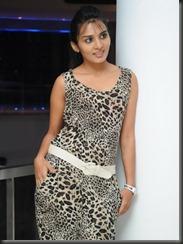 sindhu_loknath_new_pics