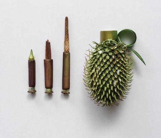 Armas de plantas (5)