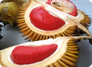 red_durian_fruit2