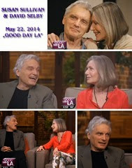 GDLA_Sullivan&Selby_Collage