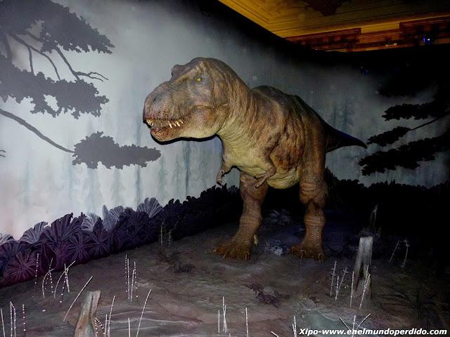 tiranosaurius-rex.JPG
