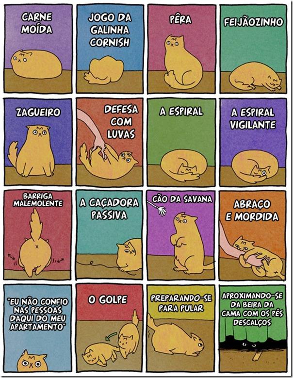 Gatos e suas facetas